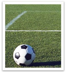 Turf Supplies for Councils, Parklands, Golf Courses and Sports Fields - http://www.buffaloturf.com.au.