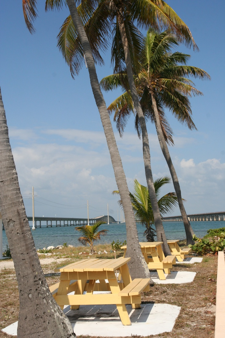 Pigeon Key Picnic Spot; with 7-Mile Bridge in the Background in Florida Keys