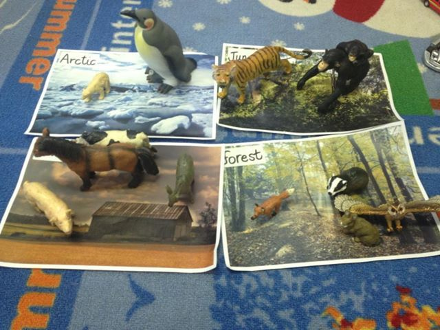 Sorting animals onto habitats