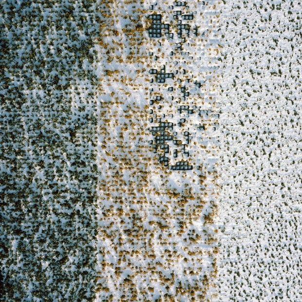 Gerco de Ruijter Almost Nature - Untitled #08
