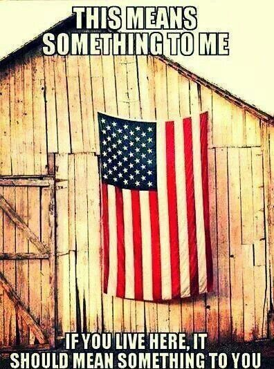 American pride. If is doesn't mean that to you, get the hell out! it means more than anything else in the universe to me my own life dwindles in comparison