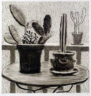 Cacti on Terrace, 1998
