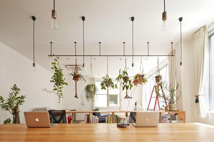 Galería de Oficina CHICHI / Koyori + Atelier Salt - 6