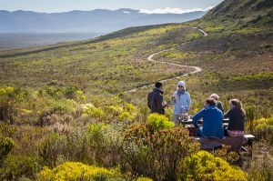 More about the reserve and its name |Grootbos