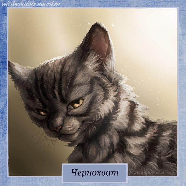 имена воителей коты воители для женщин москве