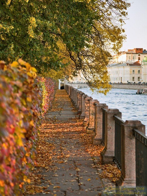 Fall in St.Petersburg, Russia