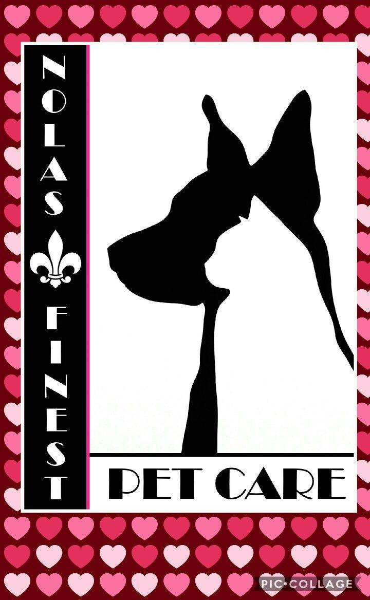 Happy Valentine's ♡♡ www.nolasfinestpets.com