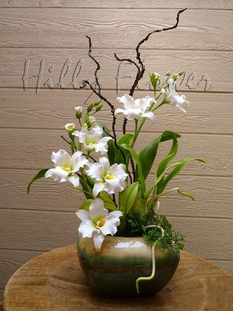 Hilly Flower - Jet Set (Lan Jet Set)