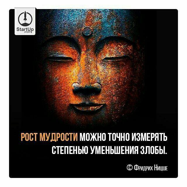 Ф. Ницше           startup project instagram