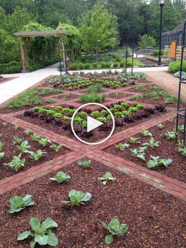 796c2dabfd3dd90cd18c2260e231cbf7 - What Is The Purpose Of Terrace Gardening