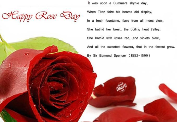 Happy Rose Day Sms Rose Day Wallpaper Happy Rose Day Wallpaper Rose