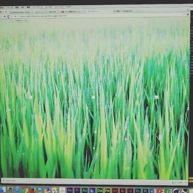 今日一の嬉しかった写真スライドショー 動いた #make #website #photography #slideshow #javascript #web