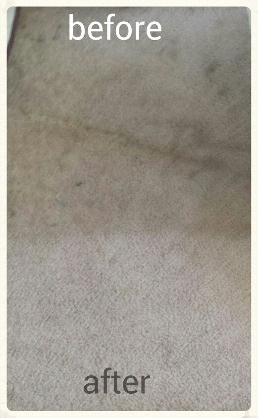 Carpet Cleaner 1cup White Vinegar 1cup Club Soda 1cup