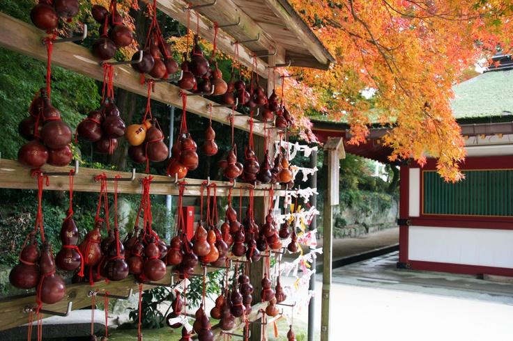 太宰府天満宮 (in autumn)