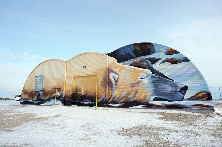 Polar Bear Jail in Churchill, MB