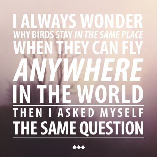 I always wonder...New Adventure, Inspiration, Food For Thoughts, Places, Favorite Quotes, Birds, Travel Quotes, Feelings, Wanderlust