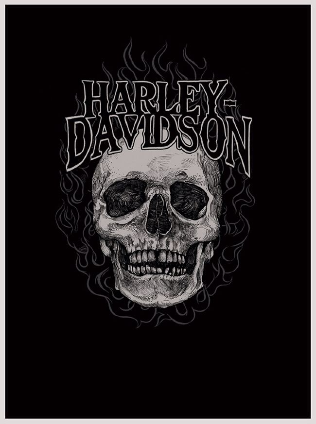 harley davison essay Harley davidson - marketing plan [student name] [course title] [instructor name] [date] table of contents table of contents 2 abstract 3 company profile and bac.