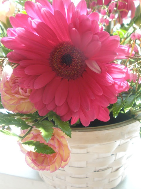 Mother's Day bouquet in a basket from my husband.   Marjorie Hughes: Flowers Gardens, Pink Flowers, Favorite Flowers, Mothers Day, Flower Baskets, Bouquets, Beautiful Flowers, Flowers Baskets, Hugh Flowers