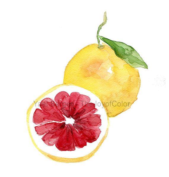 Kunstdruck von meinen Aquarellzeichnung Pink Grapefruit. Das originale-Gemälde wurde verkauft. Minimalistische botanische Untersuchung. Küche