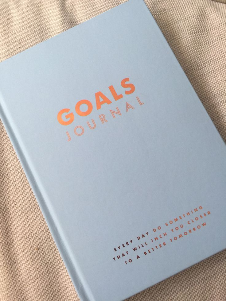 Goals Journal | Project: Suzy