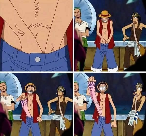 Remember when Luffy pulled that damn octopus out of his pants!? #whatthehell