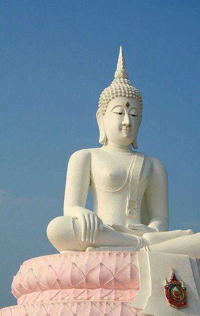 """""""Ao invés de continuar procurando pela Verdade, simplesmente abra mão dos seus pontos de vista."""" (Buddha)"""