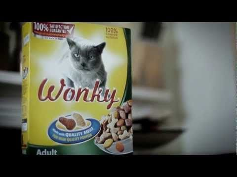 New video from Orbital. Great track plus creeping rapping cats. I guess this is what happens when you OD on catnip.