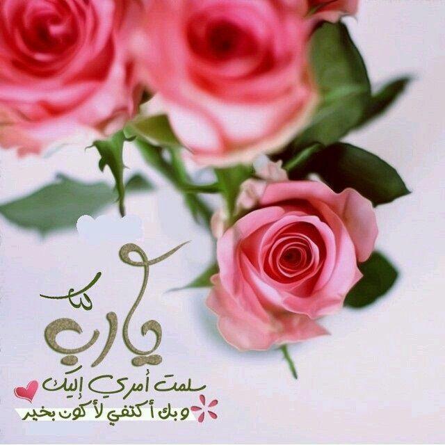 Pin By Saba Al Ani On أدعية In 2020 Flowers Rose Plants