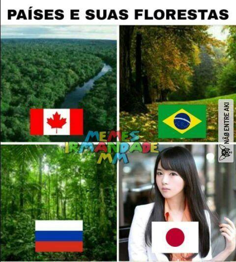 Só tenho uma leve impressão de que Brasil e Canadá tiveram as florestas trocadas,só impressão sabe!