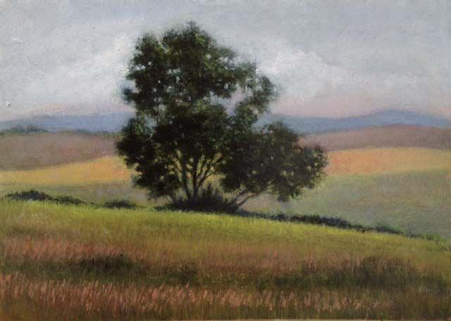 small plein air oil, Tuscany 2015. 15 x 12 cm Patricia Glee Smith