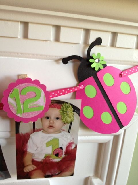 "Photo 11 of 24: Pink Ladybugs / Birthday ""Keira's First Birthday Party"" 