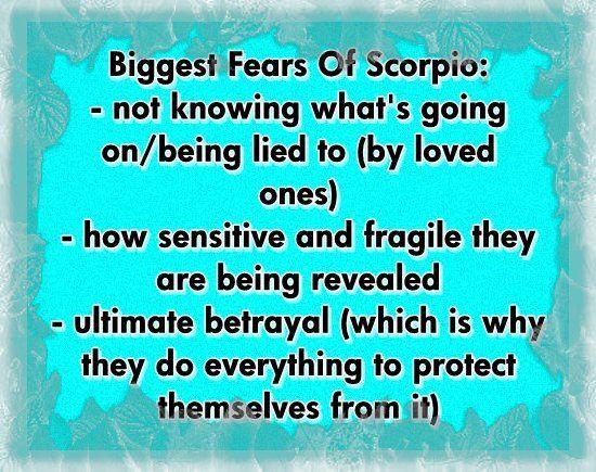 scorpios best love match