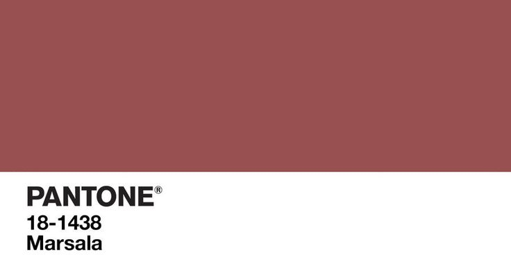 Het voorspellen van Pantone 2016 Kleur van het Jaar