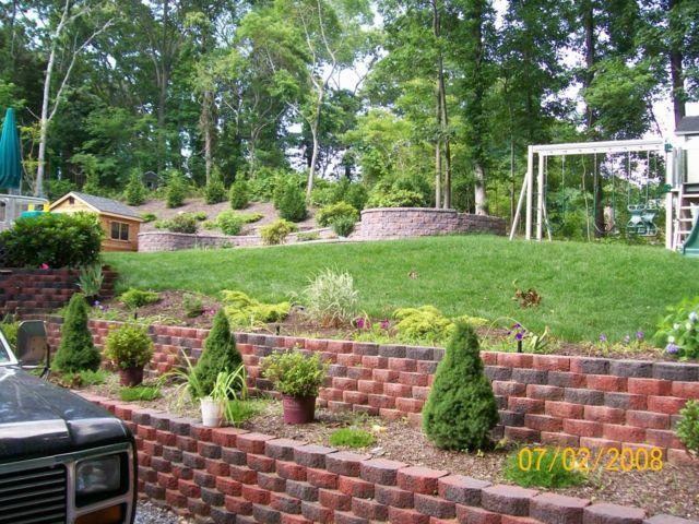 Une vue d'un jardin