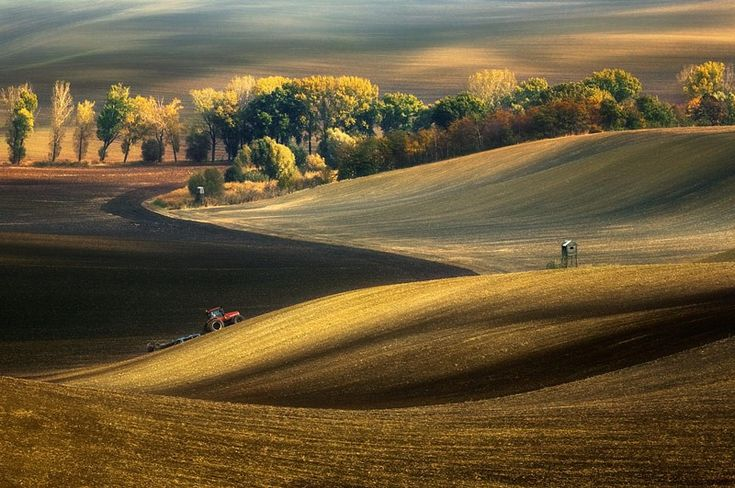Autumn Fields, South Moravia, Czech Republic