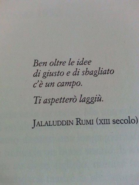 Far beyond the ideas of right and wrong, there's a field. I'll meet you there. Jalaluddin #Rumi