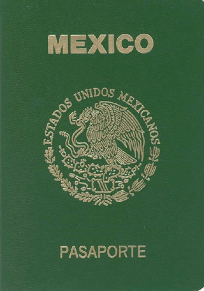 The 50 Best Passport Covers Images On Pinterest Passport Book