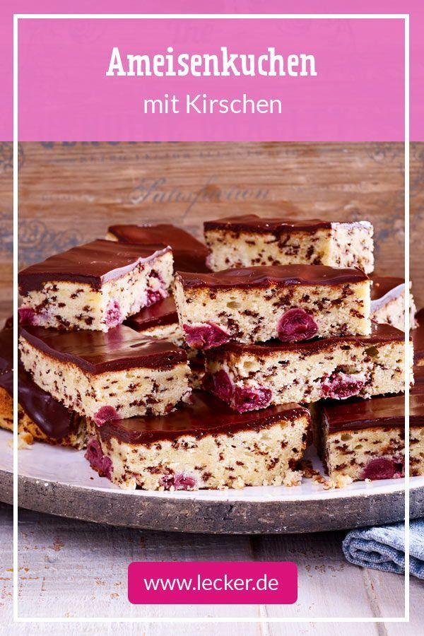 Ein schneller Teig mit Schokostreuseln, Kirschen und Schokoladenglasur – Ameisen …   – Kuchen Backen – Rezepte