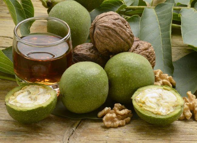 Предлагаю вам попробовать изготовить в домашних условиях чудесный бальзам из зеленых грецких орехов . Это почти универсальное средство. Незрелые плоды грецкого ореха содержат витамины: С — для укрепления иммунитета, РР (никотиновую кислоту), помогающую при хроническом гепатите и цирозе печени, способствует снижению уровня холестерина, помогает при ишемическом инсульте и используется как ранозаживляющее средство при язвах и