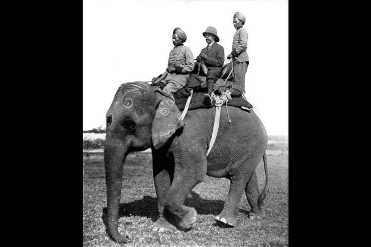 Le roi George V chasse en Inde, en 1911-1912