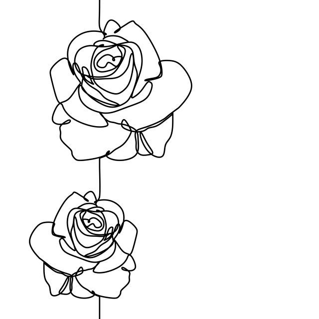 One Line Drawing Of Rose Flower Minimalist Design Isolated On White Background Vector Illustration For Poster B Rose Line Art Line Art Drawings Flower Drawing