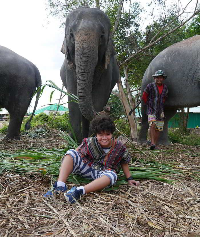 Interacting with elephants in Pattaya Thailand