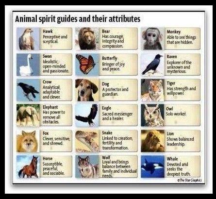 how to play spirit animals