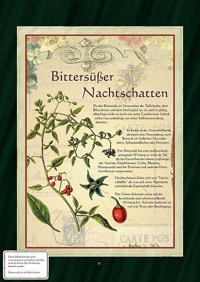 Bittersüßer Nachtschatten - In der Magie werden die Bittersüß-Zweige in das Schlafzimmer gehängt um Alpträume zu vertreiben. Aus der Pflanze wurde auch ein Liebesmittel hergestellt.