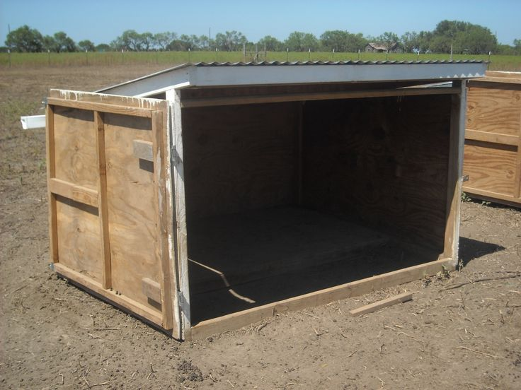Best 25 Goat Shed Ideas On Pinterest Shelter House
