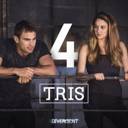 catholic review of the book divergent