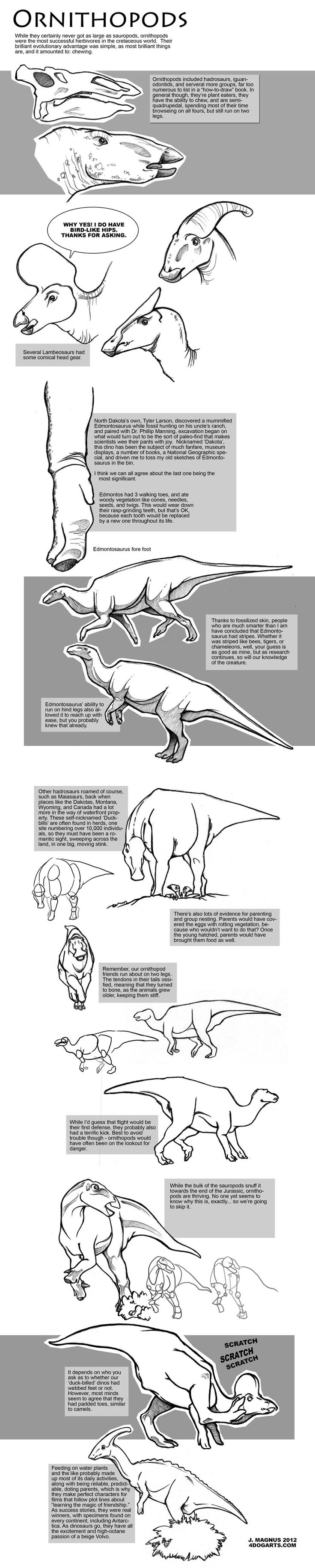 Ornithopods Webby Drawing Tutorial by sketcherjak on DeviantArt