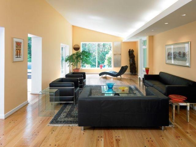 Indirekte Led Beleuchtung Wohnzimmer Decke Moderne Schwarze Ledermbel