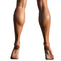 Best Calf Exercises for Women - Find out everything you need to know to exercise your calf muscles, including calf anatomy, calf muscles and posture, calf stretches for relieving excessive tension, exercise information and tips for maximizing calf workout