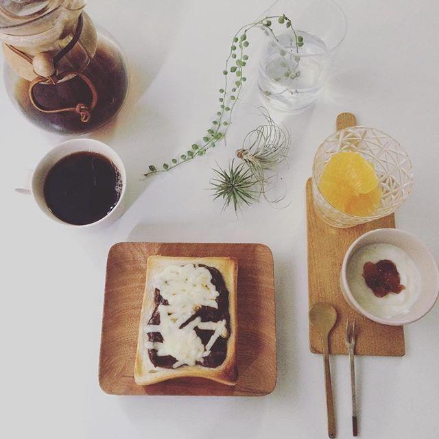 2016/12/26 09:34:05 taako_hibi おはようございます☺︎ 今朝はクリスマスの名残で残ったビーフシチューをパンに載せて、チーズをたっぷりトーストに。 年末までラストスパート皆様身体を壊されませんように。 * * * #朝ご飯#朝食#朝時間#トースト#バルミューダ#ヨーグルト#デコポン#果物#フルーツ#コーヒー#ケメックス#山口和宏 さん#吉村和美 さん#辻和美 さん#イイホシユミコ さん#うつわ#器#真鍮カトラリー#工房アイザワ#植物のある暮らし#グリーンネックレス#エアプランツ#keinoglass #日々#暮らし#シンプル
